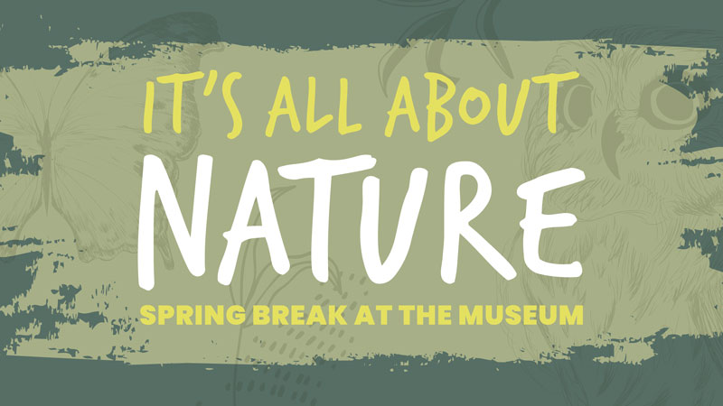 It's All About Nature Spring Break at the Museum